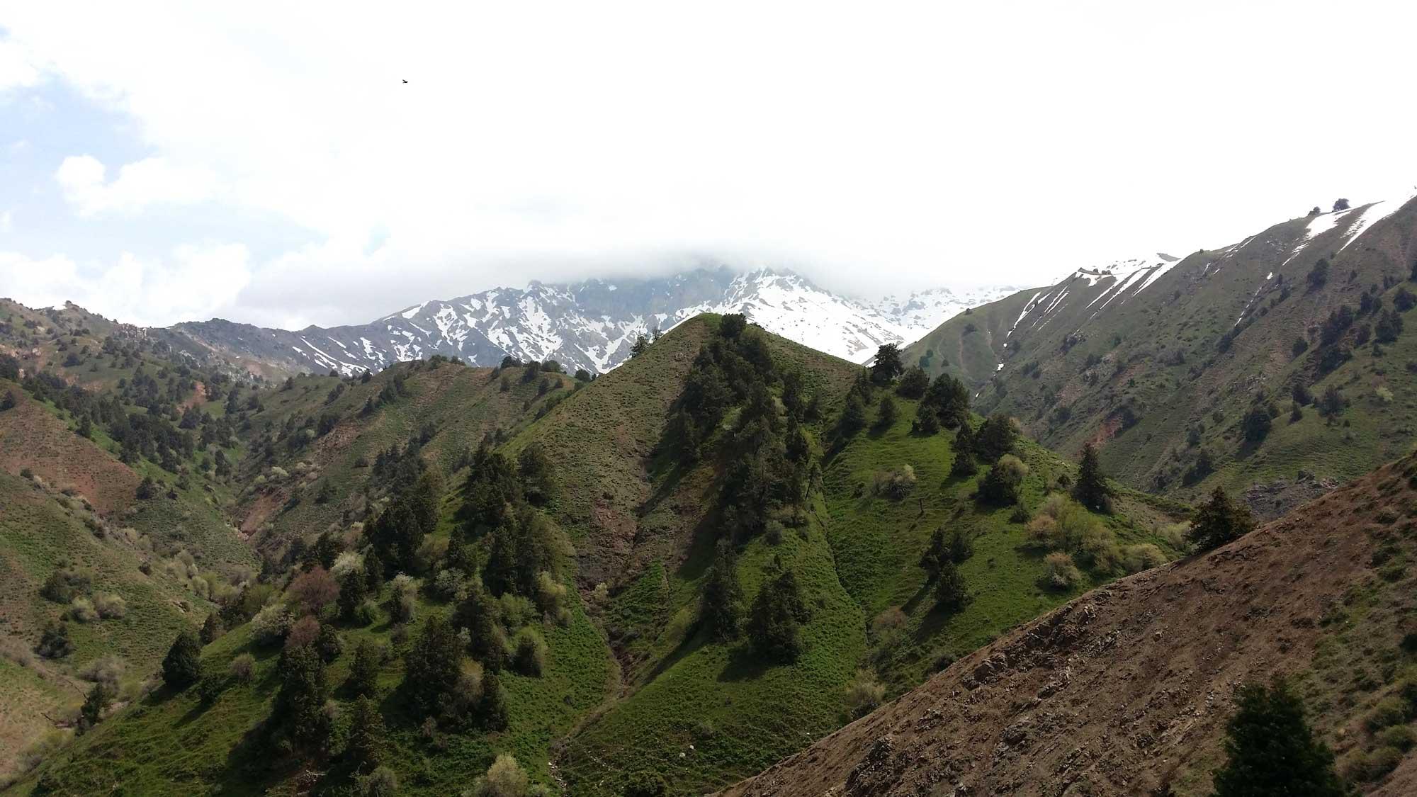 Trekking in Western Tian Shan, Uzbekistan – 6 days