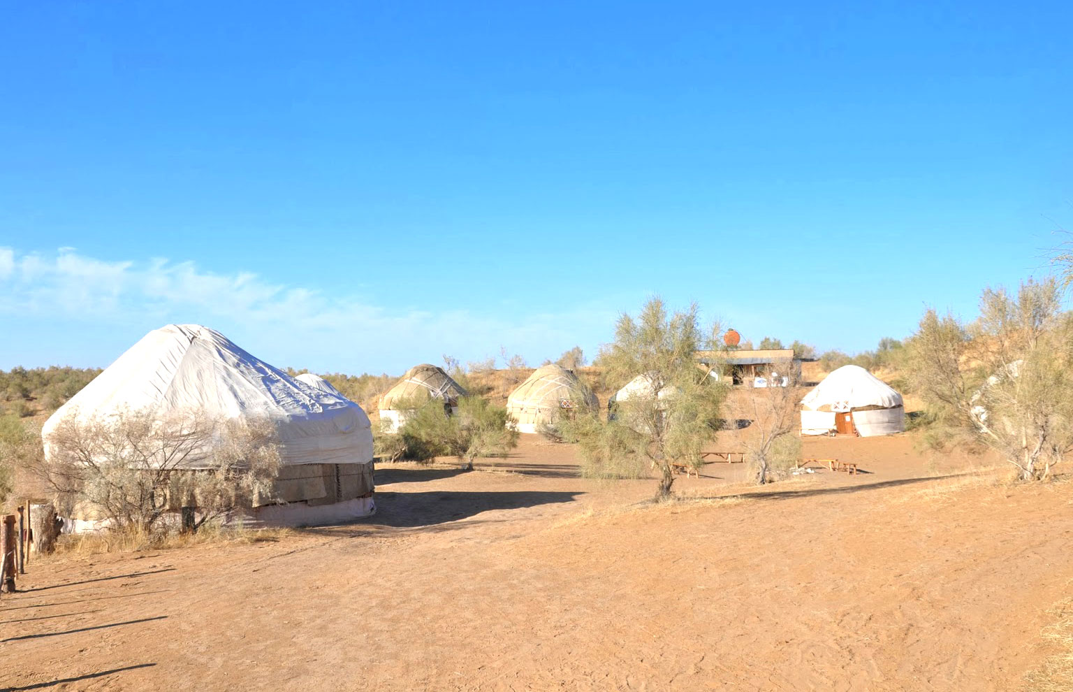 Tour to Desert Yurt Camp – 2 days